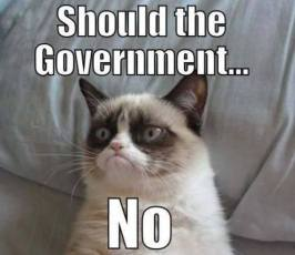 should the government